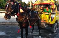 Nasza taksówka na wyspie Gili