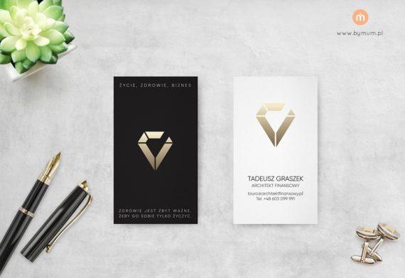 Projekt wizytówek oraz loga dla Architekta Finansowego