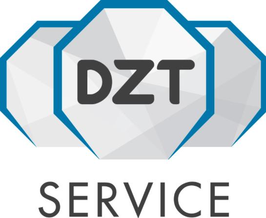 dzs service